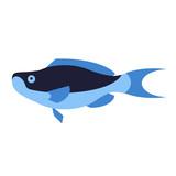 blue fish flat style illustration