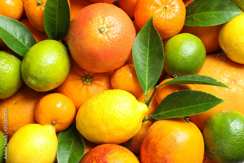 Leinwanddruck Bild Different citrus fruits as background, top view