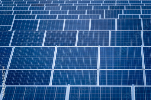 Solar panels in a row, solar panels grid, close up. photovoltaic system
