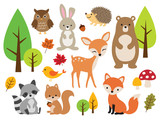 Fototapeta Fototapeta las, drzewa - Vector illustration of cute woodland forest animals including deer, rabbit, hedgehog, bear, fox, raccoon, bird, owl, and squirrel. © JungleOutThere