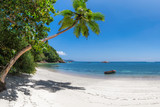 Panoramic view of exotic beach. Coco palm, white sand and turquoise sea.