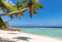 """Постер, картина, фотообои """"Caribbean sunny beach with palm on white sand and the turquoise sea on Jamaica Caribbean island."""""""