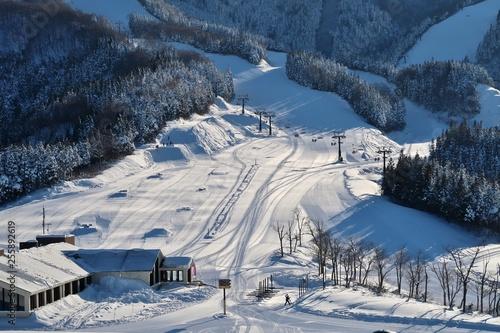 obraz lub plakat 快晴の日本のスキー場
