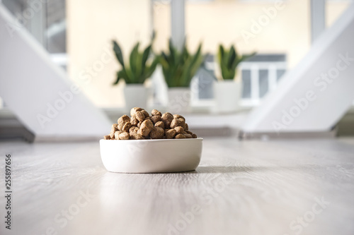 Leinwanddruck Bild Bowl with dry pet food on floor