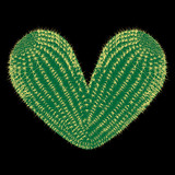 Thorny heart. Vector thorny cactus in the shape of heart illustration - 255929882