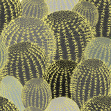 Cactus plants texture seamless pattern background - 255930097
