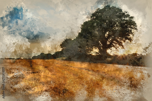Watercolour painting of hay bales in field during Summer sunset landscape
