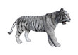 3D Rendering White Tiger on White