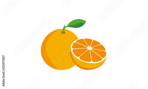 orange fruit logo vector - 255973827