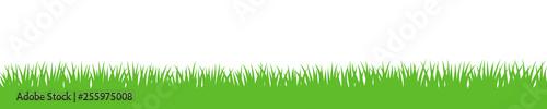 Gras Hintergrund wiederholend - 255975008