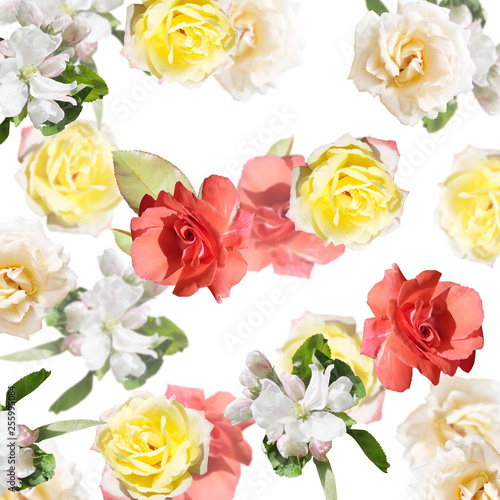 Beautiful floral background of roses and Apple blossom