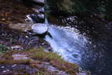 water path with silk effect. small river flowing from the waterfall in the middle of a wooded plain