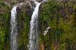 Chamarel Wasserfall - 256070647