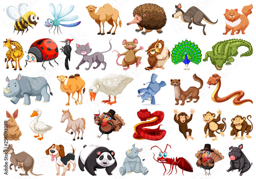 Set of cartoon animal