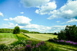 green field and blue sky, in Sweden Scandinavia North Europe