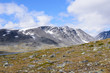 Norwegian fjaeldmark in the Jotunheimen national park