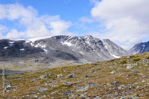 Foto Murales Norwegian fjaeldmark in the Jotunheimen national park