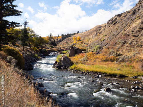 Foto Murales Whitewater River with Autumn Vegetation