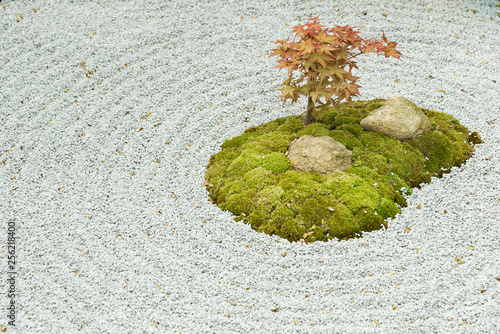 Japanese zen garden with plant, stone in raked sand © leeyiutung
