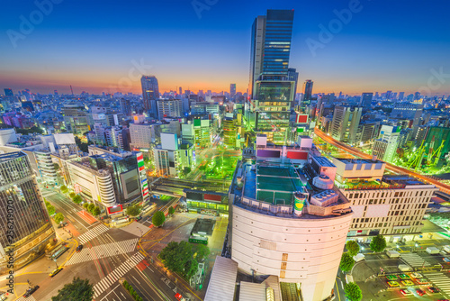 obraz PCV Tokyo, Japan city skyline over Shibuya Ward with the Shinjuku Ward skyline in the distance.