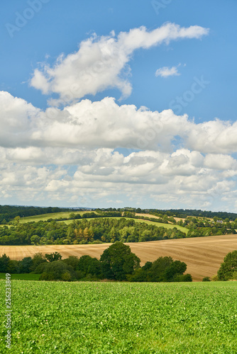 Landscape with meadow and field in Brittany in summer