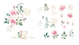 Set of floral branch. Flower pink rose, green leaves. Wedding concept with flowers. Floral poster, invite. Vector arrangements for greeting card or invitation design - 256260661