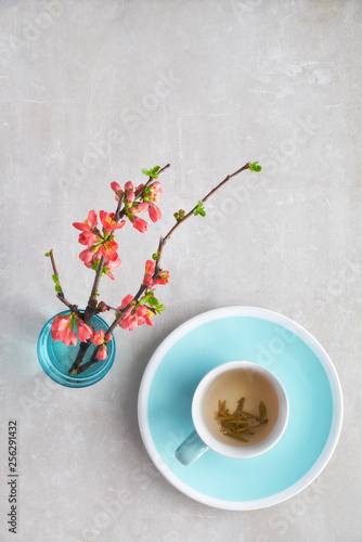 Springtime flat lay, cup of green tea and Japanese quince flowers on a grey stone, copy-space