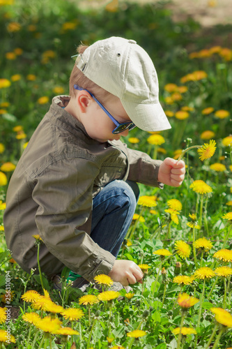 Child on green grass lawn with dandelion flowers on sunny summer day. Kid playing in garden. - 256310894