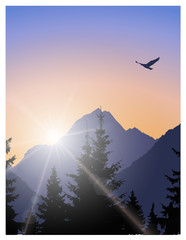 Image landscape. Brightly sun in mountains and bird in sky. © yik2007