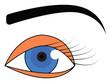 Blue eye with black eyebrow vector illustration on white background