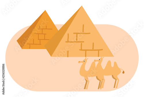Two pyramides and two camels vector illustration on white background