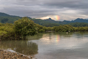 Partial rainbow over mountains in the background with mangroves growing in the foreground. Dark, cloudy sky close to sunset. Coromandel, New Zealand.