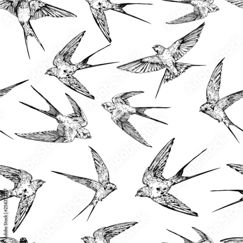 Hand drawn vector  flying swallows seamless background.