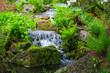 canvas print picture - Kleiner Wasserfall im Park