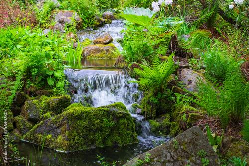 canvas print picture Kleiner Wasserfall im Park