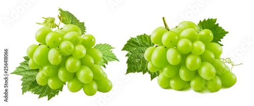 Bunches of green grapes with leaves isolated on white background © kovaleva_ka