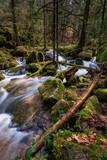 Wasserfall mit Steinen voller Moos