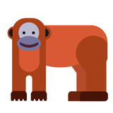 Monkey flat illustration on white