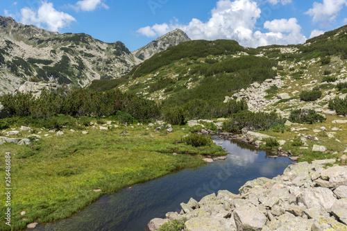 Summer landscape of Muratov peak and mountain river, Pirin Mountain, Bulgaria