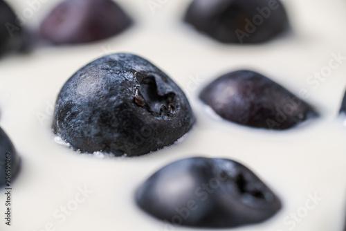 Blueberries in organic yogurt, close up photo - 256590262