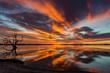 Special Sunset Lake Bonney, Barmera, SA