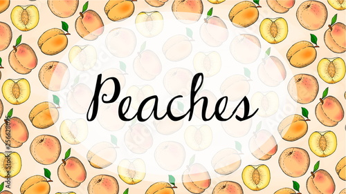 Vector Illustration of Peaches Fruits Pattern Sketch Style © Tanya
