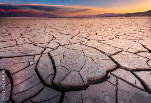 Cracked Mud Flats Bathed in Dawn Light © dfikar