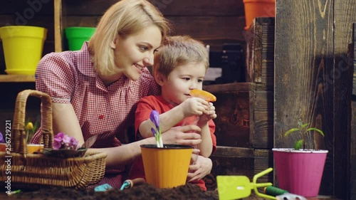 Cute child boy helps his mother to care for plants. Mother and her son engaged in gardening at home. Family plant flowers. Mom and son are spraying on the flowers in pots on a wooden background.