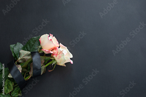 Two white-pink roses on a black background tied with a black ribbon. Mourning