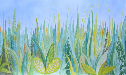 Hand drawn watercolor botanical background. Blue and green grass.  Plants and sky.