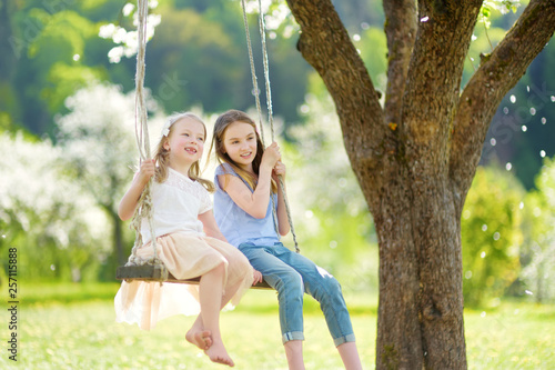 Leinwanddruck Bild Two cute sisters having fun on a swing in blossoming old apple tree garden outdoors on sunny spring day.