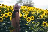Woman at sunflower field