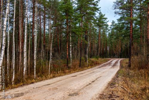 empty gravel road in autumn - 257293477