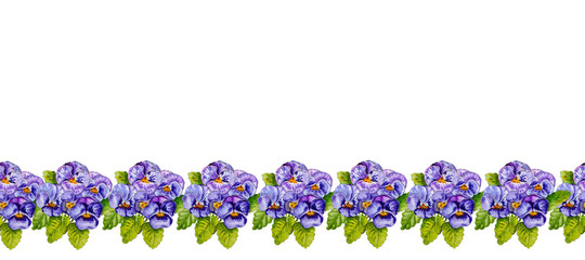 Watercolor colorful pansies flowers drawing. © sriba3